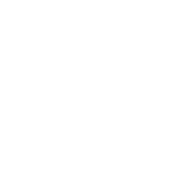 Media Library - Icon Twitter